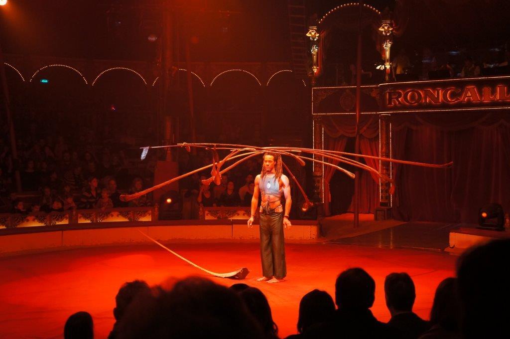 Weihnachtsfeier Zirkus.Zum Abschluss In Den Zirkus Scandinavian Bloghaus